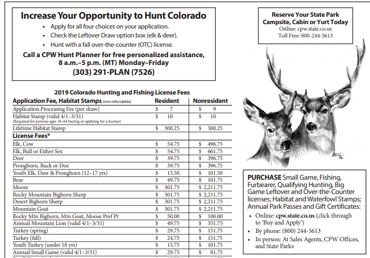 Intro to Elk Hunting in Grand County